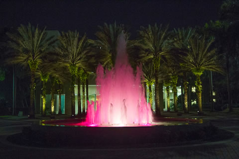 Fountain Lighting Ceremony